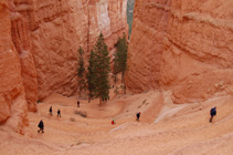 Bryce Canyon tours from Vegas
